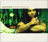 If You Can't Say No (Lenny Kravitz)